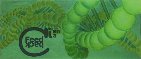 banner Feedback Ciencia